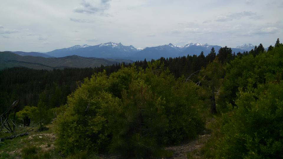 Bitterroot National Forest.